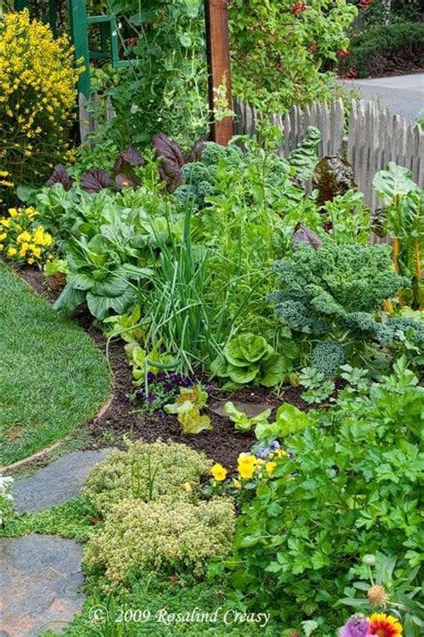 1000 ideas about front yard gardens on pinterest front