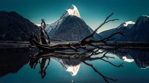 wallpaper milford sound mitre peak moon  world
