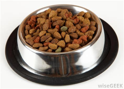 dry dog food  pictures