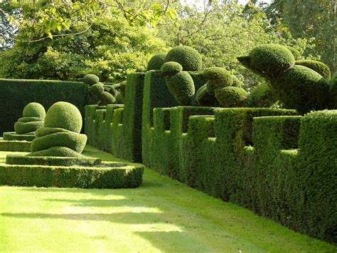 Topiary Gardens by Garden Thinnings Top Topiary
