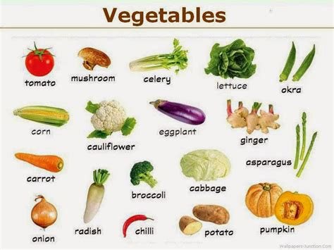 root vegetables pictures and names whitemoonsaran
