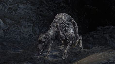 do dogs souls every souls iii enemy ranked