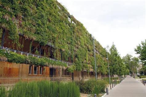 giardini in verticale giardino verticale fai da te