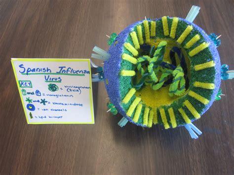 membuat model virus 3d influenza virus model high school biology pinterest