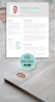 free fancy resume templates fancy resume templates