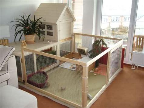 ara haltung wohnung indoor rabbit housing bunny approved house rabbit toys