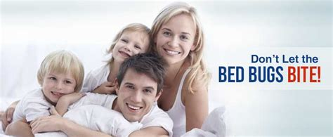 chicago bed bug experts and exterminators bed bug