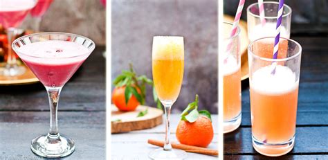 festive holiday cocktails fresh origins festive cocktails for the holidays with vitamix giraffes