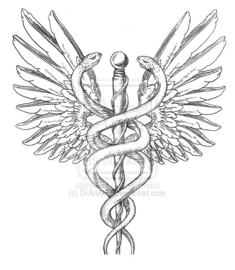 1000 images about m j s caduceus on pinterest morale