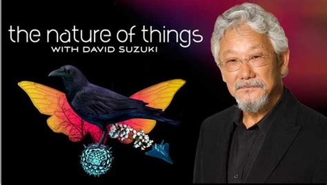 Suzuki Nature Of Things See And Hear Science Science Literacy Libguides At