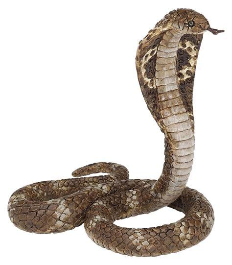 king cobra images realistic rubber king cobra snake props
