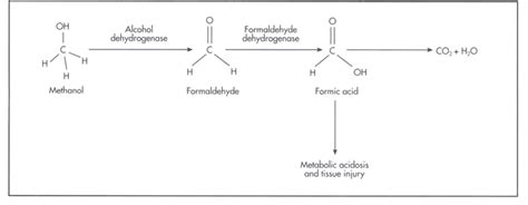 Why Does Methanol Cause Blindness acid base physiology 8 6 metabolic acidosis due to drugs and toxins
