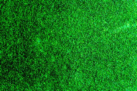 backgrounds free 1000 beautiful grass background photos 183 pexels 183 free