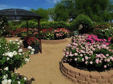 stunning rose garden design ideas wearefound home design