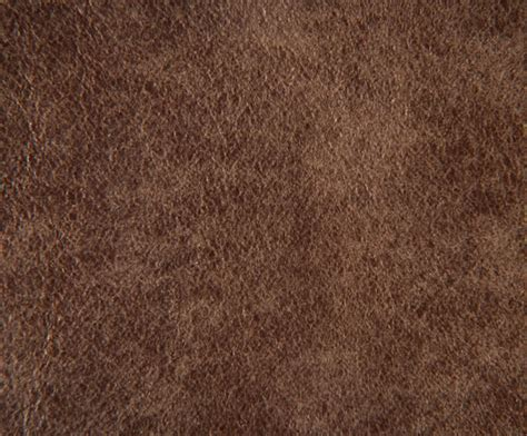 Grain Leather by Grain Aniline Dyed Leather Futura Leathers