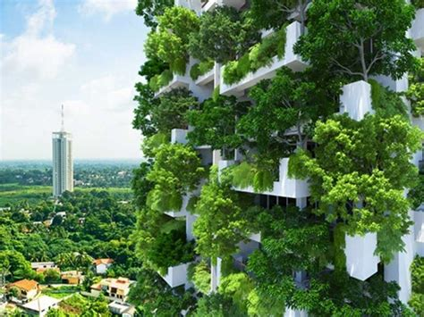 Pot Anggrek Dari Kayu 1 Set five exles of vertical gardens including a preview of