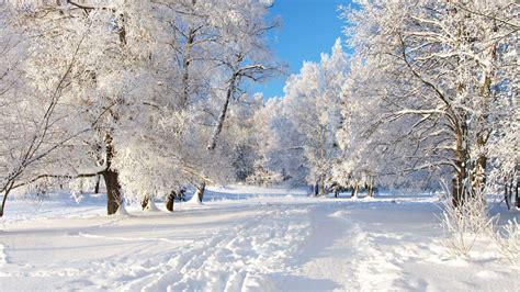 winter wallpaper images of winter for your desktop winter snow backgrounds wallpaper cave