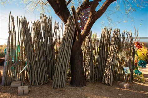 ocotillo fence panels civano nursery