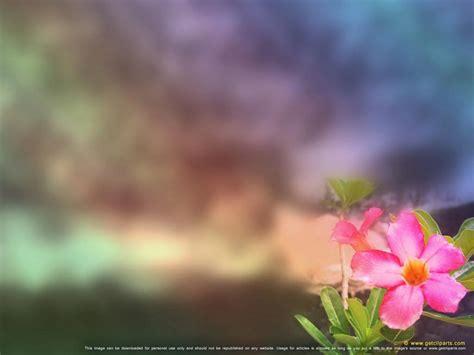 Flower Powerpoint Getcliparts Visual Communication Designs Flowers Garden Powerpoint Templates Flowers