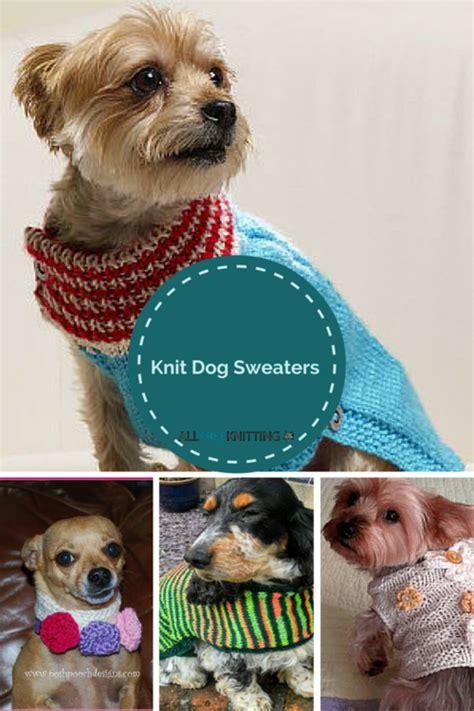 boat dog sweater knitting for pets 22 knit dog sweaters allfreeknitting