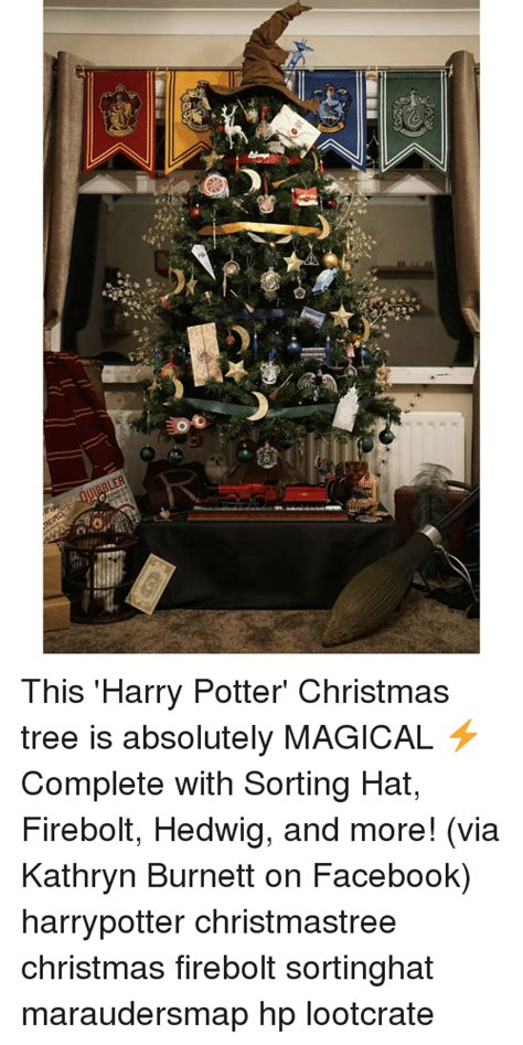 Harry Potter Christmas Meme - 25 best memes about hedwig hedwig memes