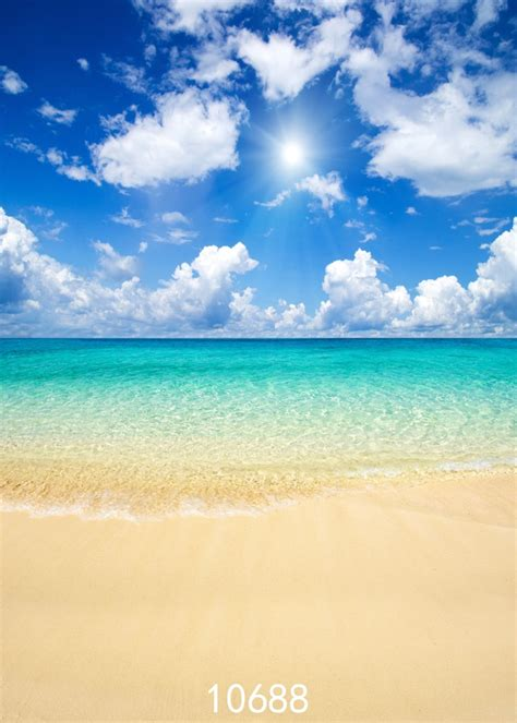 sea backgrounds summer holiday photo backgrounds coconut