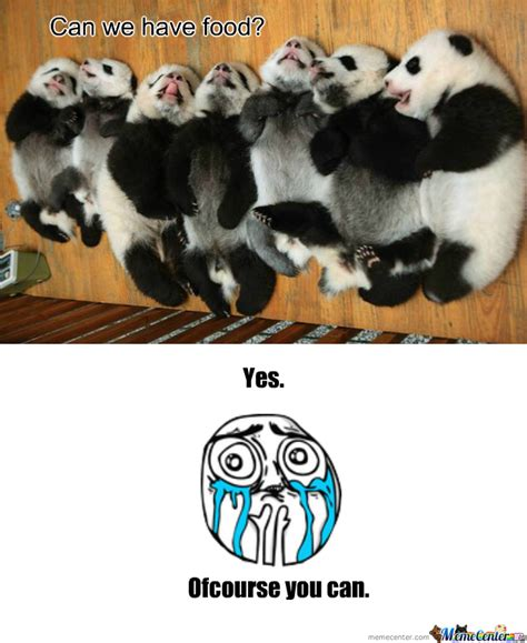 Cute Overload Meme - rmx cuteness overload by recyclebin meme center