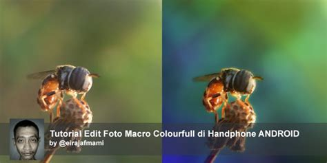 tutorial edit foto untuk fotografer tutorial edit foto macro colourfull di handphone android
