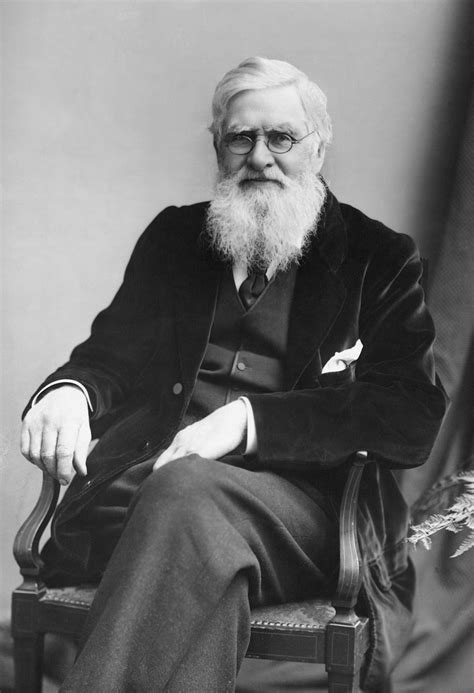 Alfred Russel Wallace Biografi image gallery wallace