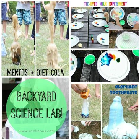 backyard science projects 95 best images about stem and steam library programs on