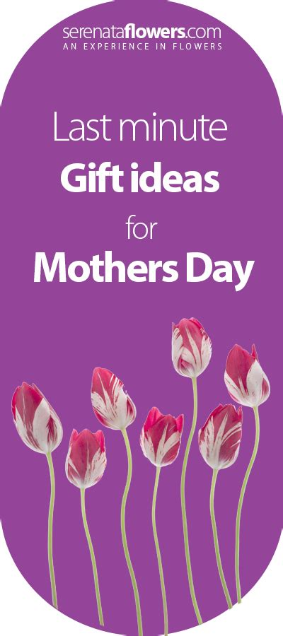 last minute gift ideas for last minute gift ideas for mothers day pollennation