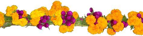 imagenes de flores de muertos mi escuelita multigrado 161 llegaron las calaveras
