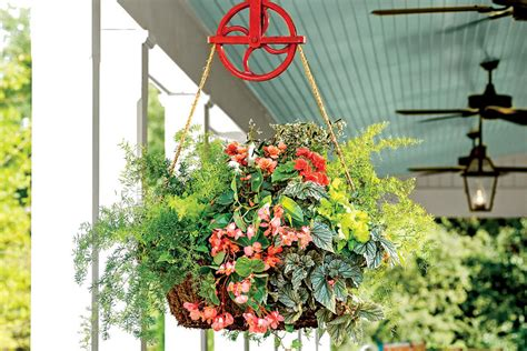 hanging container garden pulley hanging container hanging garden baskets