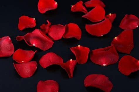 candele e petali di rosa je t aime san valentino ciao donna il sito della donna