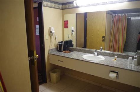 circus bathroom circus circus hotel casino las vegas updated 2018