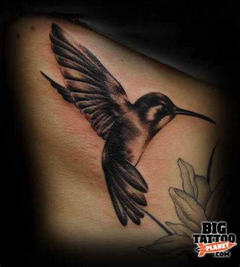 small black hummingbird tattoo best 25 hummingbird black ideas on