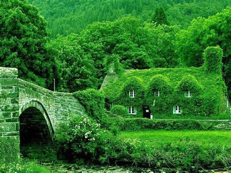 dream green homes 45 best images about my lovely ireland on pinterest old
