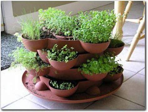 indoor herb garden kit indoor herb garden kit paleo pinterest