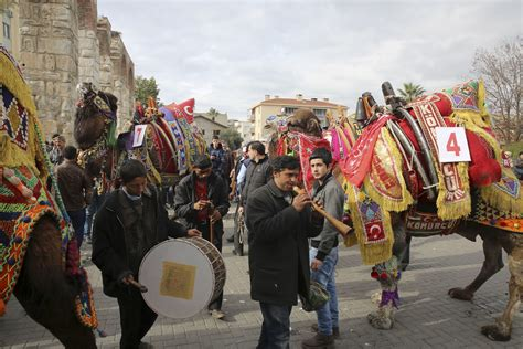 Feast Of Contest by Gallery Camel Contest Ahead Of The Annual Selcuk