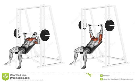 incline smith machine bench press exercising incline smith machine bench press stock