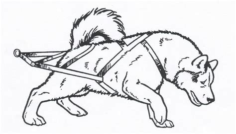 17 Best Images About Iditarod Winter 2015 2016 On Iditarod Coloring Pages