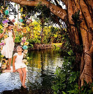 Best Places to Take Wedding Pictures in Miami   Biz Hybrid