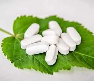 wann sollte antibiotika anschlagen pflanzen statt antibiotika teil 1 gesunex