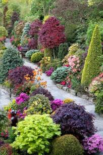 beautiful combination of shrubs trees flowers a1 pictures