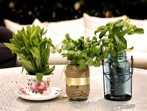 creating  indoor winter herb garden stockland