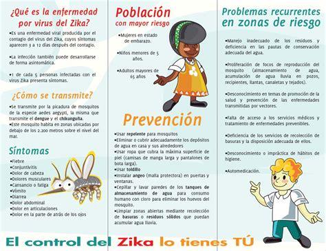 imagenes de vectores que transmiten enfermedades prevenci 243 n de enfermedades por vectores cruz roja colombiana