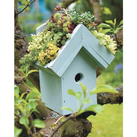 idee giardini piccoli 35 piccoli giardini idee e progetti per spazi ridotti