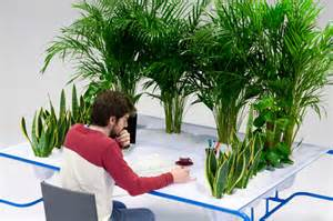 Plant On Desk by Cleanest Greenest Desk Uses Three Indoor Plants To Grow