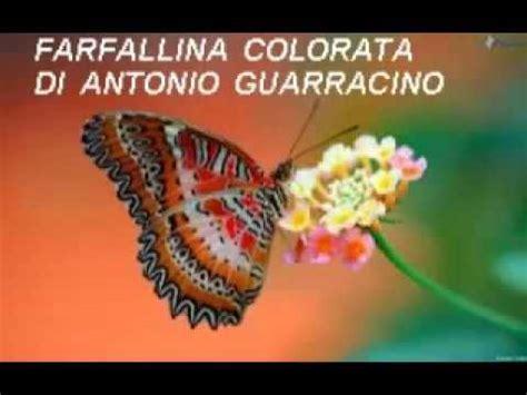 farfallina testo farfallina colorata