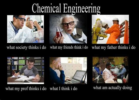 Chemical Engineering Meme - 21 best images about career engineer on pinterest karate